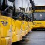 Львовские перевозчики сегодня работают вне правового поля