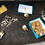 На Львовщине СБУ задержала военнослужащего, который торговал боеприпасами