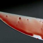 Мужчина, который ранил ножом женщину-патрульную, может сесть за решетку на всю жизнь