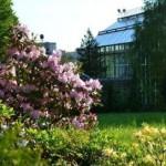 В Ботаническом саду львовского университета €? «День открытых дверей»