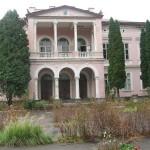 Люди самостоятельно будут упорядочивать дворец Бадени на Львовщине (фото)