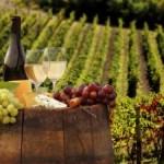 В Украине исчезнут шампанское и коньяк