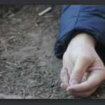 Таинственное ДТП на Львовщине нашли труп мужчины, который мог быть жертвой наезда авто