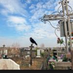 Пенсионерка-вандалка: на Львовщине старшая женщина поглумилась над могилой