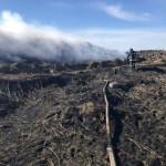 Возле Львова горит свалка