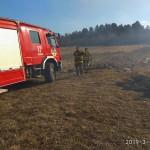 Львов в огне: показали масштабы пожаров