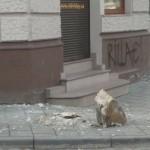В центре Львова обвалилась часть балкона (фото)