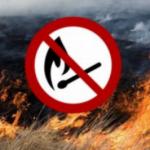 Штрафы за сжигание сухостоя таки могут значительно повысить