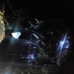 На Львовщине водитель автомобиля столкнулся с деревом: двое пострадавших