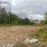 Городской совет бесплатно раздает земли под коттеджи?