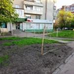 Ночью во Львове вырубили 29 берез в сквере на Варшавской (фото)