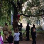 Во Львове 9-летний парень застрял на дереве