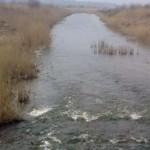 На границе с Польшей почернела река (фото)
